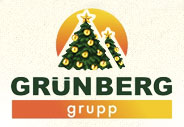 E-mail рассылка к новому году от grunberg-auto.ru